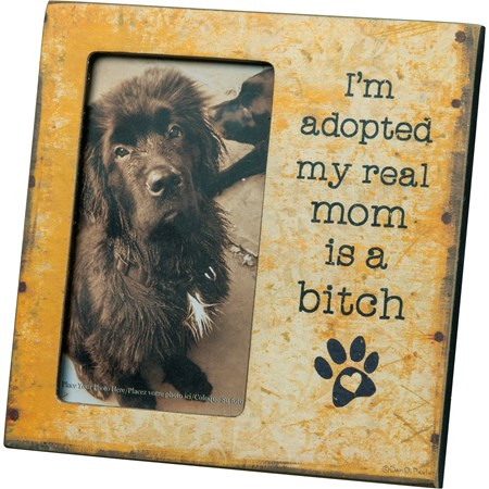 "Plaque Frame - I'm Adopted - 6"" x 6"" x 0.25"", Fits 3"" x 5"" Photo - Wood, Paper, Glass, Metal"