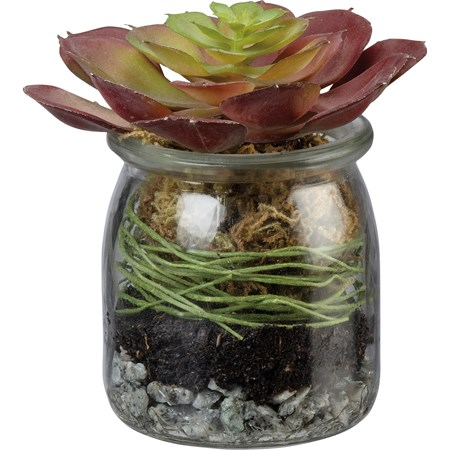 "Jar - Red Rosette Succulent - 2.75"" Diameter x 4.25"" - Glass, Plastic, Stone"