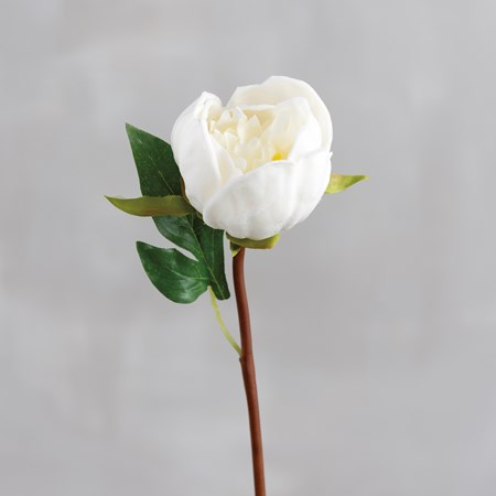 "Pick - White Peony - 12"" Tall - Plastic, Fabric, Wire"