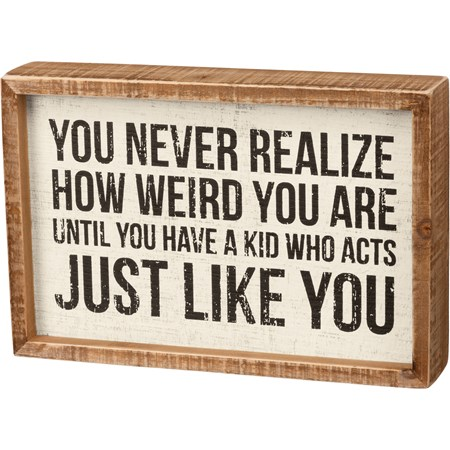 "Inset Box Sign - Never Realize How Weird You Are - 9"" x 6"" x 1.75"" - Wood"
