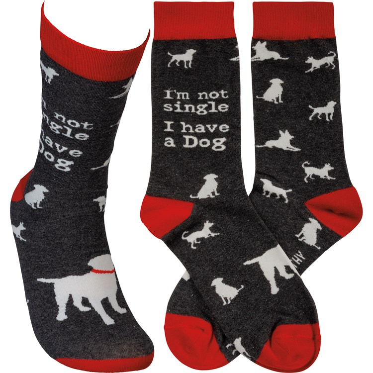 Socks - I'm Not Single I Have A Dog - One Size Fits Most - Cotton, Nylon, Spandex