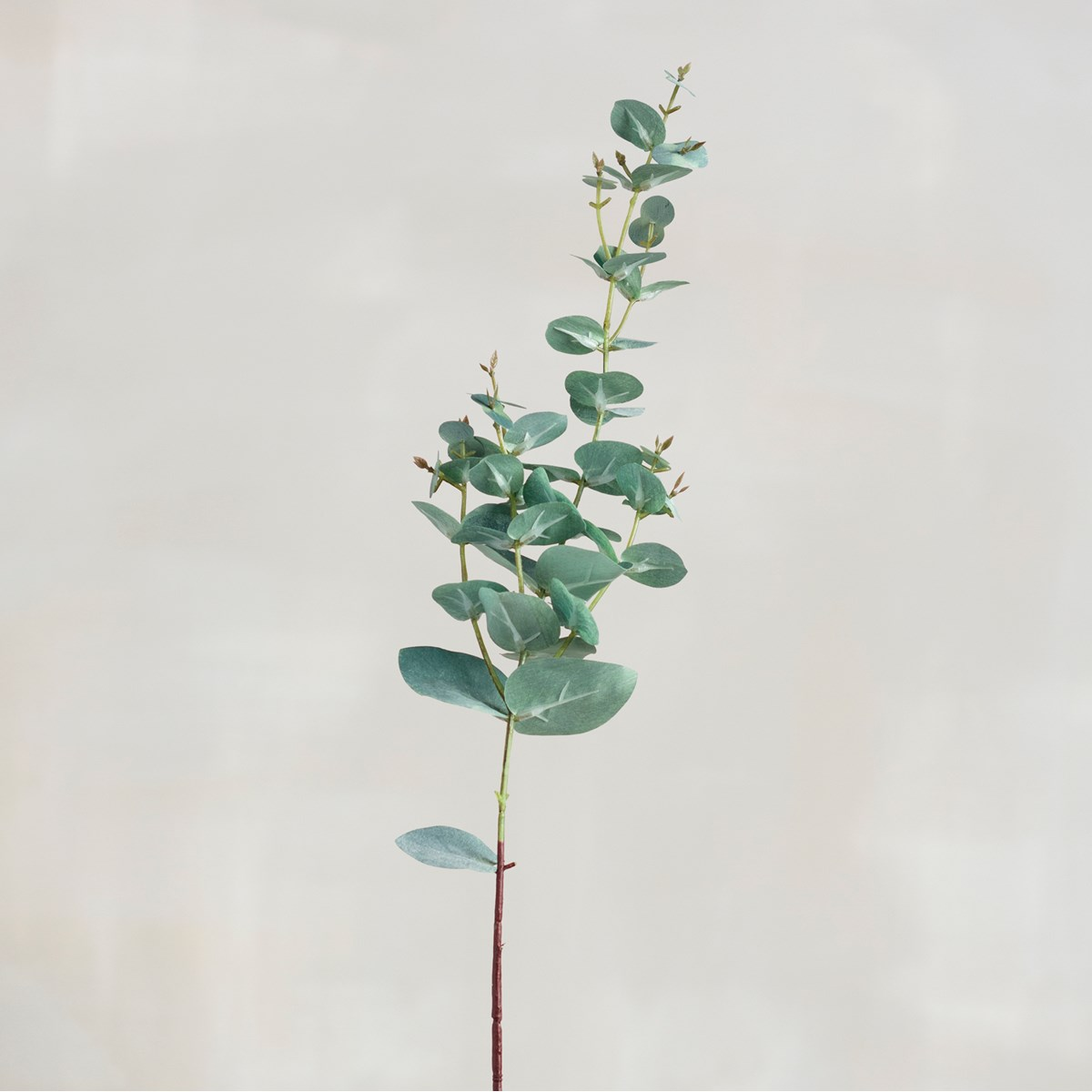 "Pick - Green Eucalyptus - 28.50"" Tall - Plastic, Fabric, Wire"