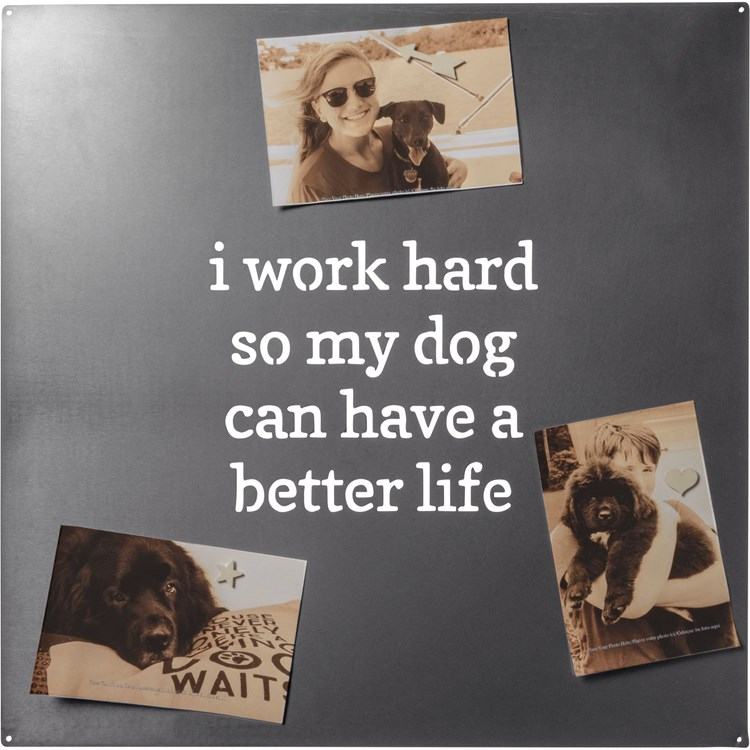 "Magnet Board - My Dog Can Have A Better Life - 18"" x 18"", 9 magnets included - Metal"