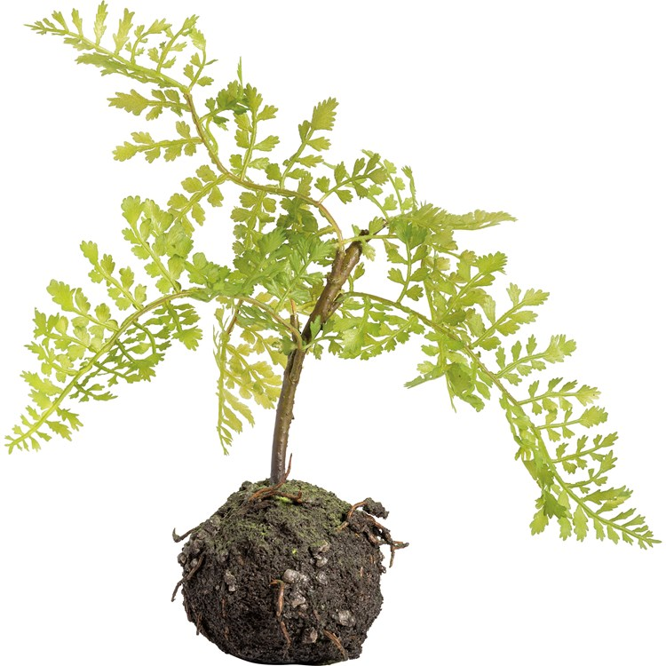 "Plant - Fern - 11"" Tall, Ball: 3.50"" Diameter - Plastic, Natural Foliage"
