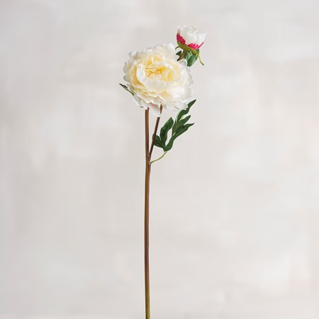 "Pick - Cream Peony - 24"" Tall - Plastic, Fabric, Wire"