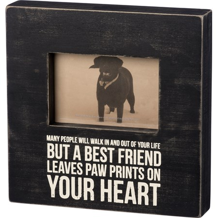 "Box Frame - Leaves Paw Prints - 10"" x 10"" x 2"", Fits 6"" x 4"" Photo - Wood, Glass, Metal"
