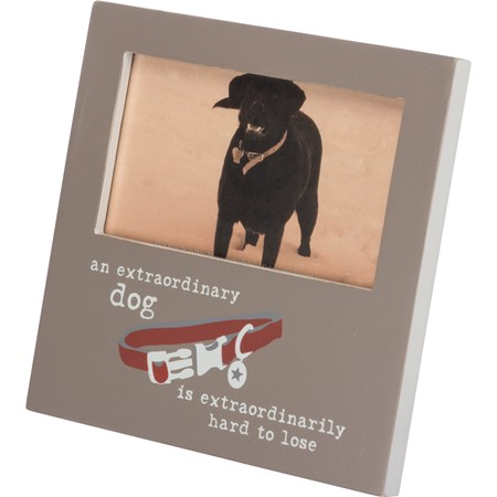 "Plaque Frame - Extraordinary Dog Is Hard To Lose - 6"" x 6"" x 0.25"", Fits 5"" x 3"" Photo - Wood, Glass, Metal"