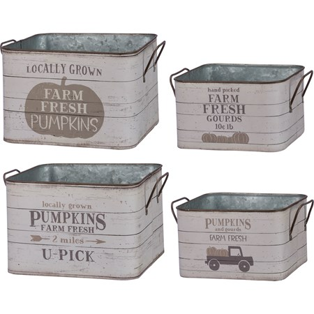 "Bin Set - Fresh Pumpkins, Fresh Gourds - 9.25"" x 6.25"", 7.50"" x 4.50""  - Metal, Paper"
